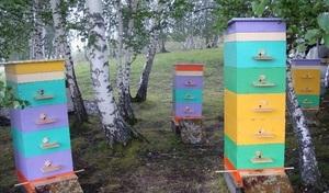 Описание многокорпусных пчелиных ульев