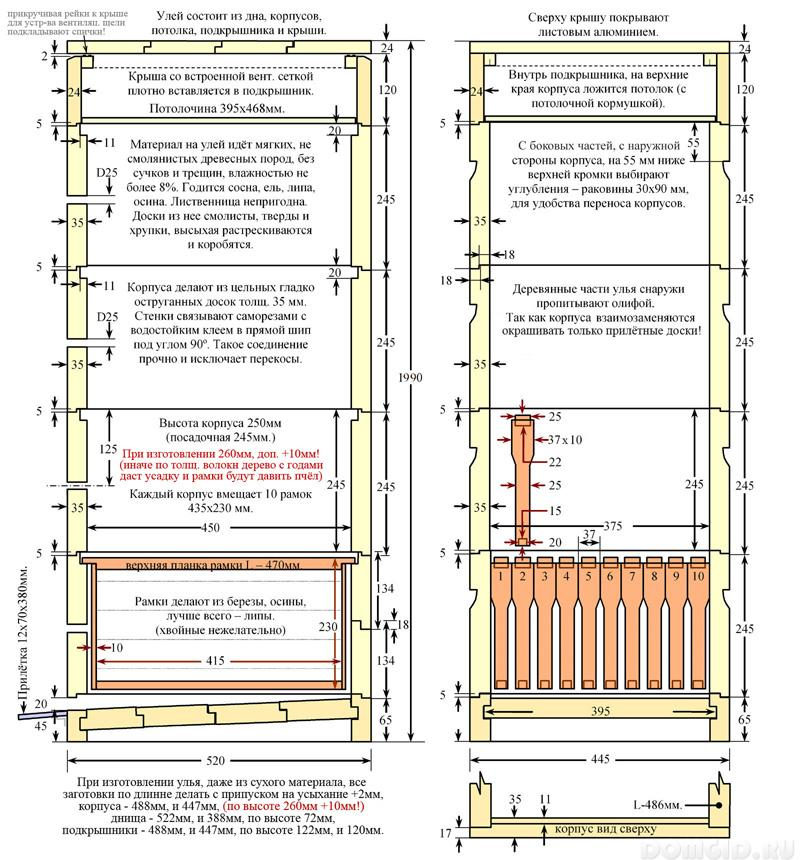 Ульи для пчел: конструкции и устройство, строение и разновидности