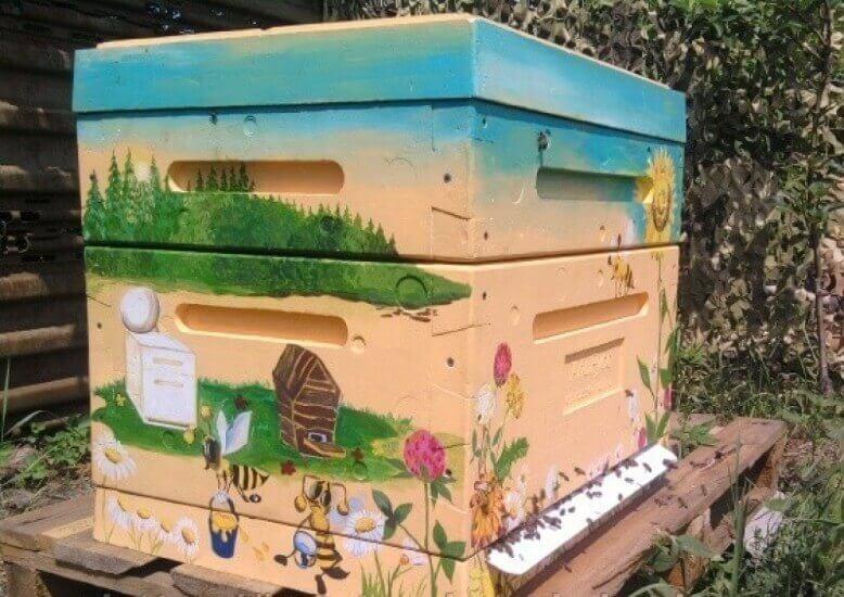 Домик для пчел: как сделать своими руками, чертежи, размеры 96