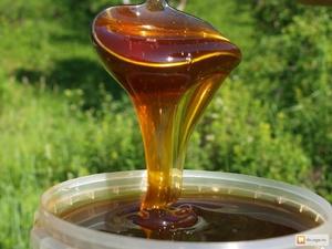 мед в ложке